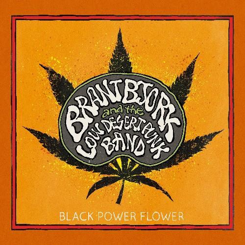 Desert rock (stoner/doom autorisé) - Page 11 Brant-Bjork-and-the-Low-Desert-Punk-Band-Black-Power-Flower-39536-1