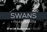 Swans-flyer